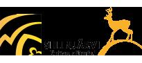 Siilinjarvi_logo
